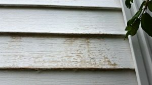 Washing siding on a house