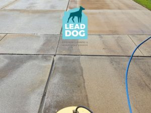 Driveway Power Washing Company Naperville Lead Dog Services