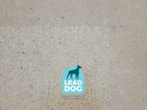 Patio Pressure Washing Naperville After Lead Dog Services