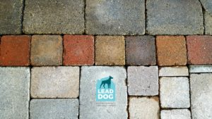 Patio power washing company Naperville Lead Dog Services